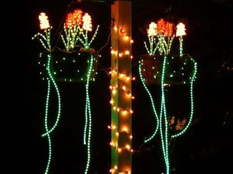 image description - Oglebay Park Christmas Lights